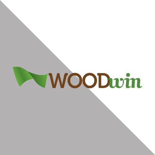 woodwin חלונות